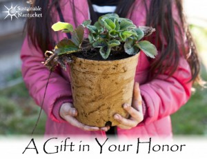Gift-Card-Draft-Flower-Pot-1024x791