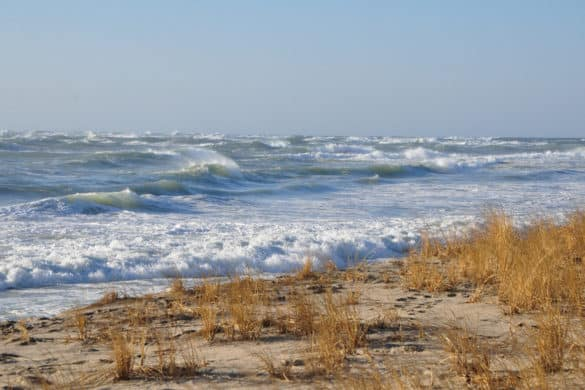 Nantucket Beach on New Year's Day