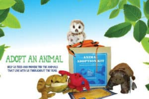 Maria Mitchell Association adopt-an-animal