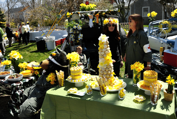 Nantucket Daffy Picnic