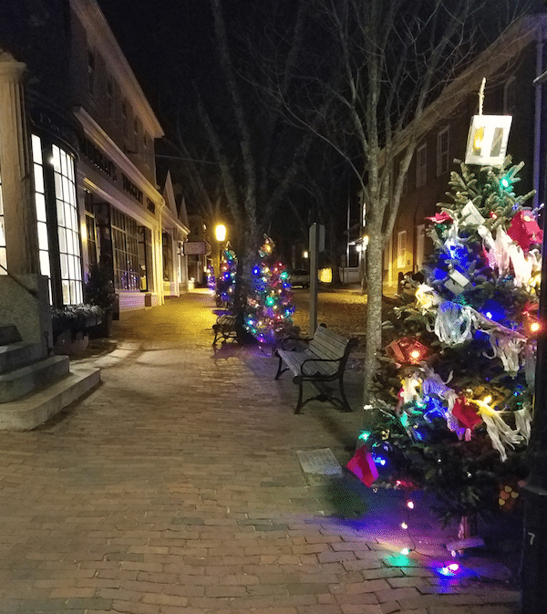 Nantucket Christmas Trees Murray