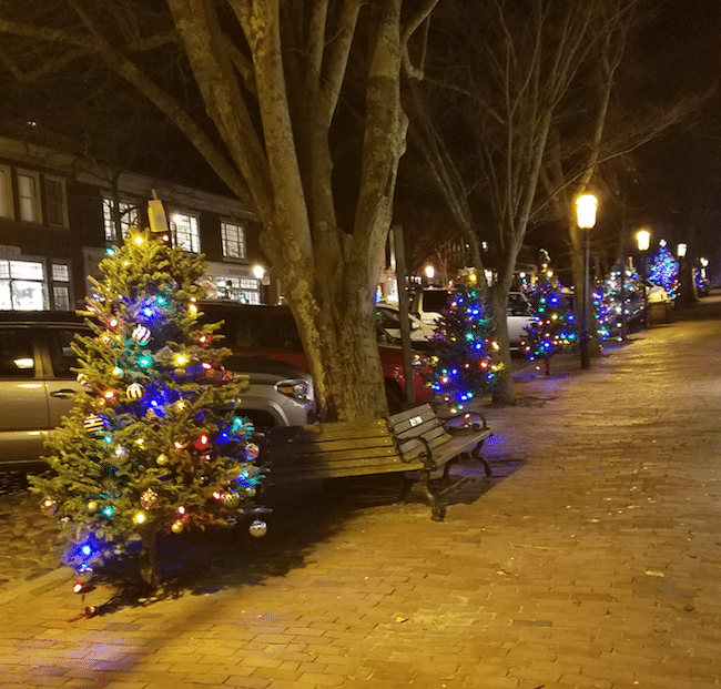 Nantucket Christmas Trees Right