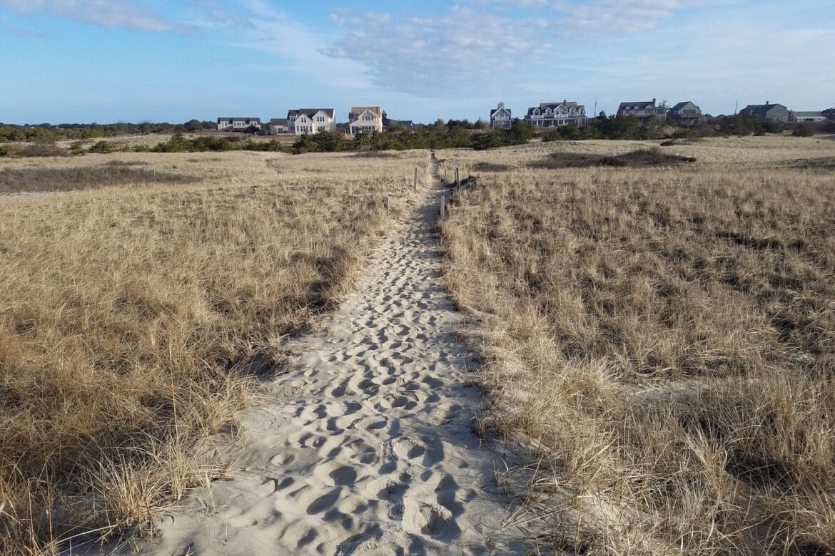 March Morning Walk on a Nantucket Beach
